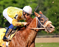 A jockey uses the crop to whip his racehorse faster while dirt flys through the air in this commercial horse racing photograph by Brian Buckner Photography, Shreveport, Louisiana.